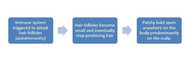 Homeopathic treatment for Alopecia Areata
