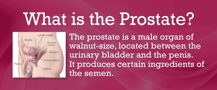 nonbacterial prostatitis treatment Gyertyák a múmia a prosztatitisből